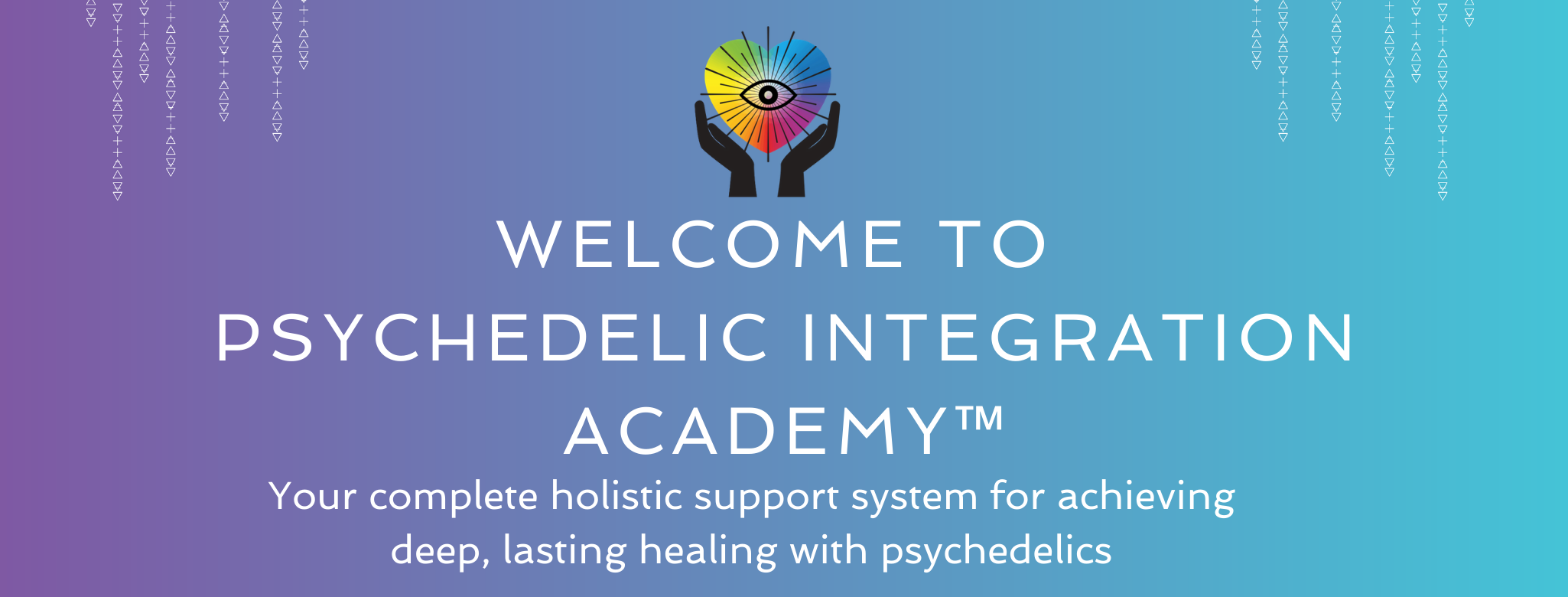 psychedelic integration academy